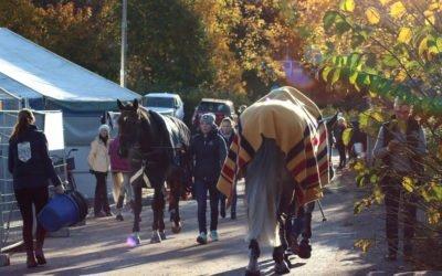 Tampereen Hevoset-messujen bonuspaikka