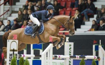 Nuorten hevosten luokat näyteikkuna maailmalle
