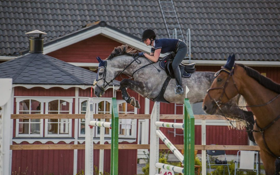 Aada Lätti treenaa täysillä – tähtäimenä Helsinki Horse Show