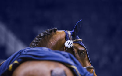CSI5*-W Helsinki Horse Show Program 2019 launched