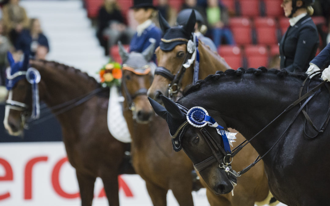 Sandra Dahlin wins LähiTapiola Grand Prix Freestyle
