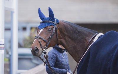 Pohjola Vakuutus ja hevostarvikeketju Hööks Horse Show'n uusimmat kumppanit
