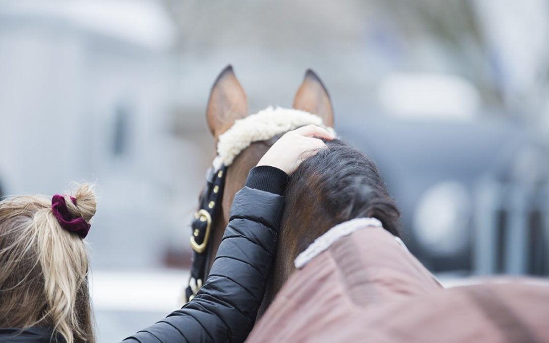 Helsinki Horse Show signs two new sponsorships